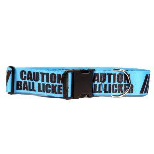 CAUTION Ball Licker 2inCollar