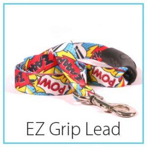 type-ez-lead