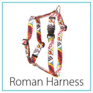 type-roman
