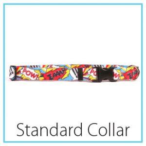type-standard-collar