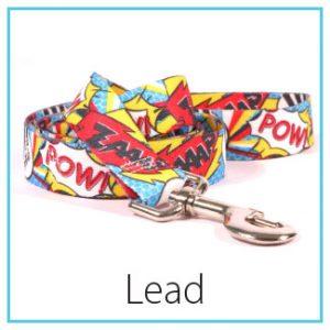 type-standard-lead